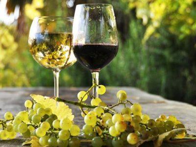 vino-italiano-da-record